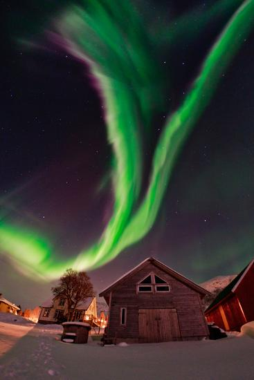 The Aurora Borealis, or Northern Lights, Appear Above a Village-Babak Tafreshi-Photographic Print