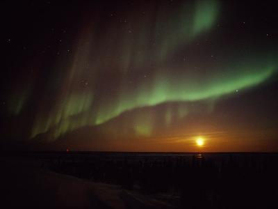 The Aurora Borealis Streaks Across the Twilight Sky-Norbert Rosing-Photographic Print