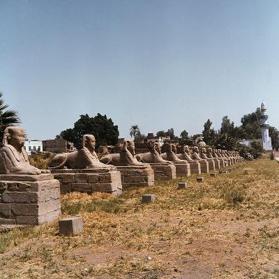 The Avenue of the Sphinx at the Temple of Luxor-Pietro Ronchetti-Photographic Print