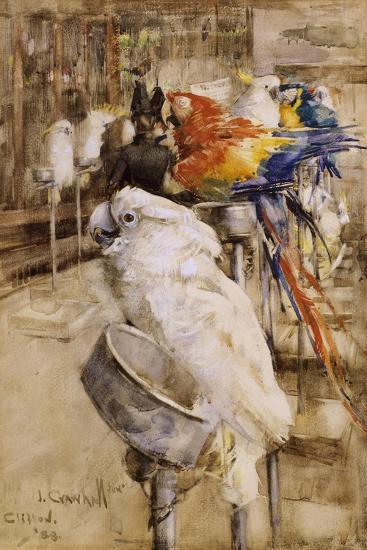The Aviary, Clifton, 1888-Joseph Crawhall-Giclee Print