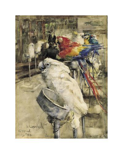 The Aviary, Clinton-Joseph Crawhall-Premium Giclee Print