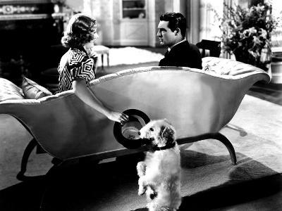 The Awful Truth, Irene Dunne, Asta, Cary Grant, 1937--Photo