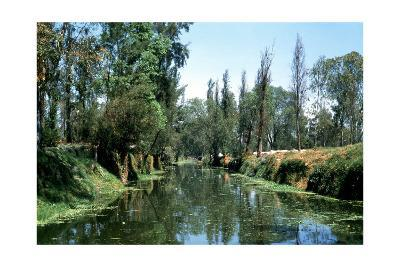 The Aztec Canals at the Floating Gardens of Xochimilco--Giclee Print
