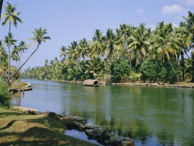 The Backwaters at Chavara, Kerala State, India, Asia-Jenny Pate-Photographic Print