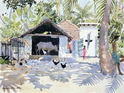 The Backwaters, Kerala, India, 1991-Lucy Willis-Giclee Print