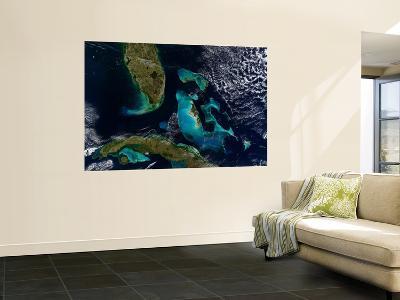 The Bahamas, Florida, and Cuba--Wall Mural
