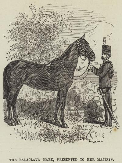The Balaclava Mare, Presented to Her Majesty--Giclee Print