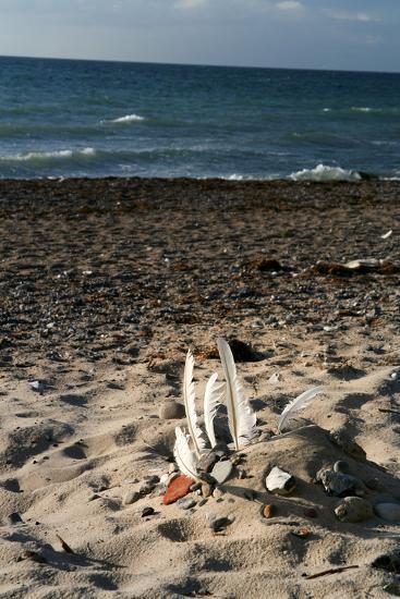 The Baltic Sea, RŸgen, North Beach-Catharina Lux-Photographic Print