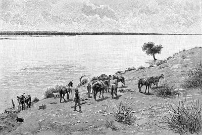 The Banks of the Rio Neuquen, Argentina, 1895-Alfred Paris-Giclee Print