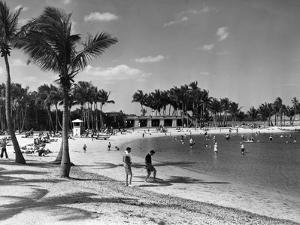The Bathing Lagoon at Matheson Hammock Park Is a Favorite Spot for Family Outings