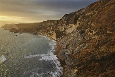 The Beach and Chalk Cliffs around Durdle Door, in the Jurassic Coast World Heritage Site-Nigel Hicks-Photographic Print