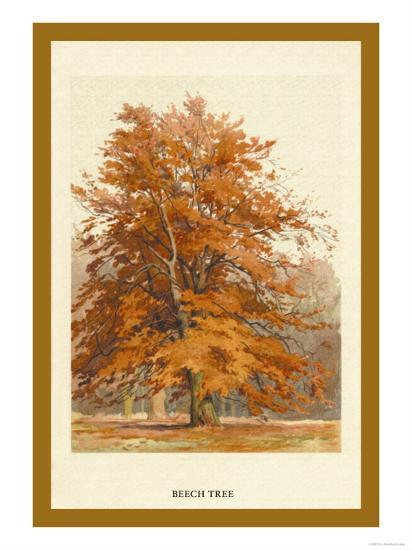 The Beech Tree-W^h^j^ Boot-Art Print