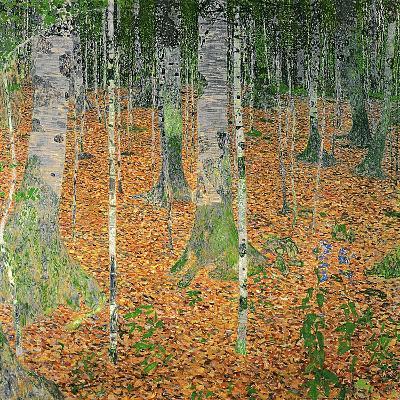 The Birch Wood, 1903-Gustav Klimt-Giclee Print