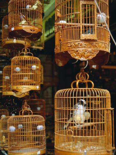 The Bird Market, Hong Lok Street, Mongkok, Kowloon, Hong Kong, China-Fraser Hall-Photographic Print