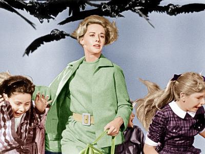 The Birds, Tippi Hedren, 1963--Photo