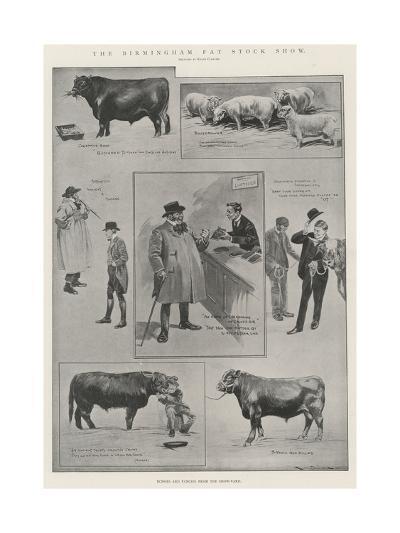 The Birmingham Fat Stock Show-Ralph Cleaver-Giclee Print