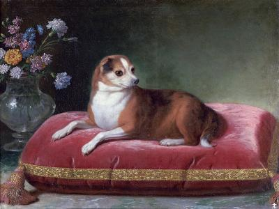 The Bitch on a Cushion, C1694-1735-Jean Ranc-Giclee Print