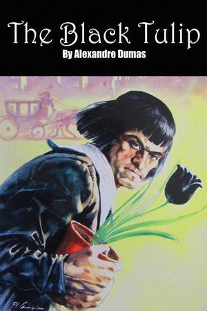 https://imgc.artprintimages.com/img/print/the-black-tulip_u-l-q19rmsy0.jpg?p=0