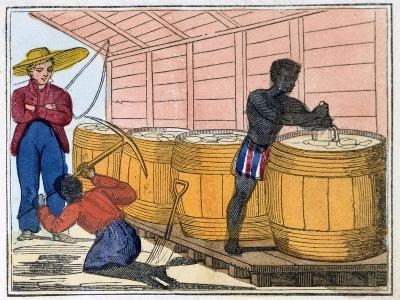 The Blackman's Lament on How to Make Sugar, 1813-Amelia Alderson Opie-Giclee Print