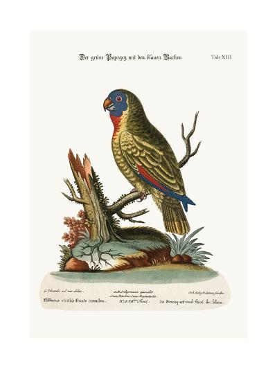 The Blue-Faced Green Parrot, 1749-73-George Edwards-Giclee Print