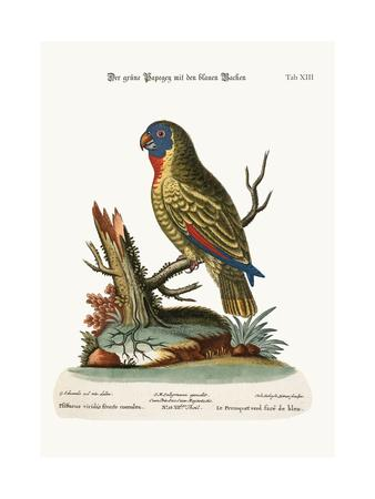 https://imgc.artprintimages.com/img/print/the-blue-faced-green-parrot-1749-73_u-l-pul8ra0.jpg?p=0