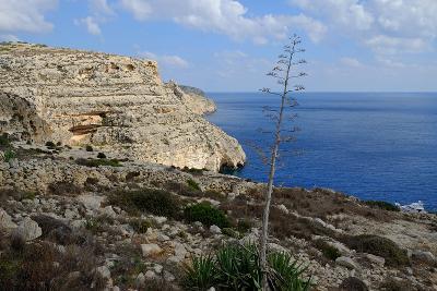 The Blue Grotto Malta-Diana Mower-Photographic Print