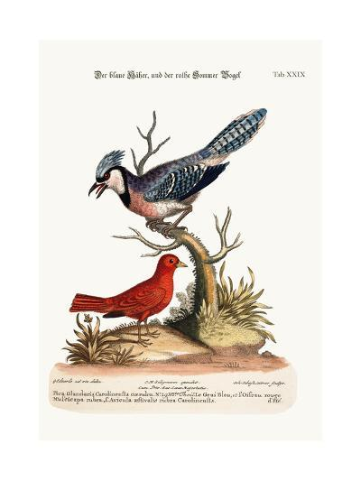 The Blue Jay, and the Summer Red-Bird, 1749-73-George Edwards-Giclee Print