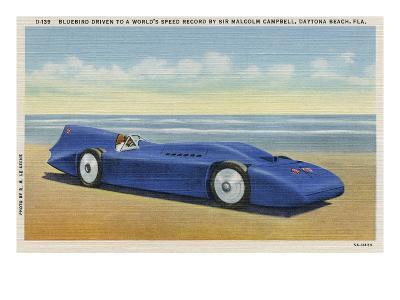 The Bluebird 5-R.H. Le Sesne-Art Print