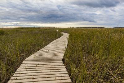 The Boardwalk Through the Tidal Marsh at Mass Audubon's Wellfleet Bay Wildlife Sanctuary-Jerry and Marcy Monkman-Photographic Print