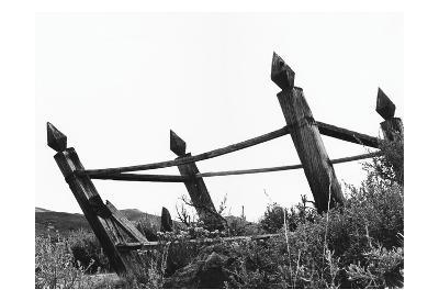 The Bodi Fence-Albert Koetsier-Art Print