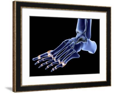 The Bones of the Foot-PASIEKA-Framed Photographic Print