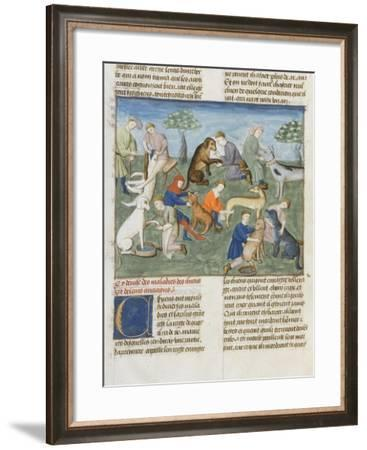 The Book of Gaston Phoebus Hunting in Care for Dogs--Framed Giclee Print