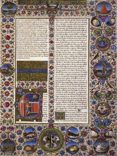 The Book of Leviticus, First Volume of Bible of Borso D'Este, Illuminated by Taddeo Crivelli--Giclee Print