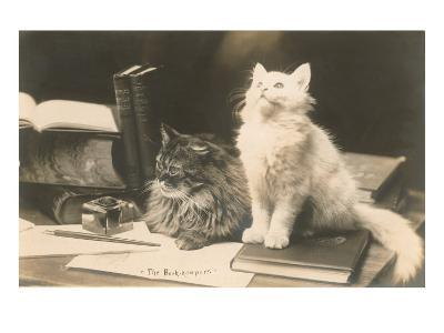The Bookkeepers, Cats on Desk--Art Print