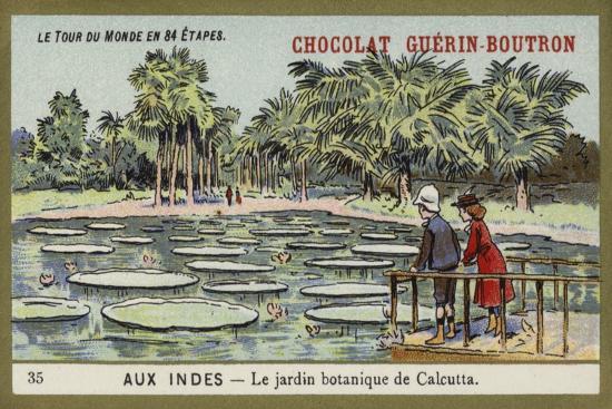 The Botanical Gardens, Calcutta, India--Premium Giclee Print