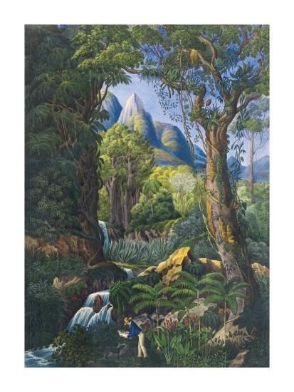 The Botanist-Unknown-Premium Giclee Print