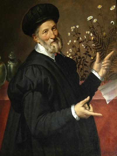 The Botanist-Bartolomeo Passarotti-Giclee Print