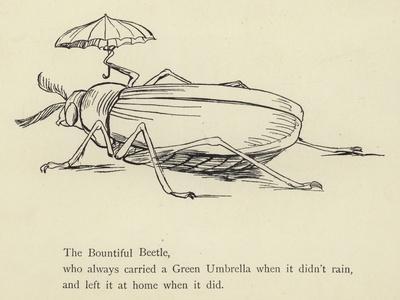 https://imgc.artprintimages.com/img/print/the-bountiful-beetle_u-l-pplisy0.jpg?p=0