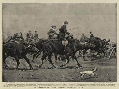The British in Egypt, Buffalo Racing at Cairo-Frank Dadd-Giclee Print