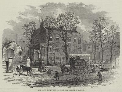 The Brown Institution, Vauxhall, for Diseases of Animals--Giclee Print