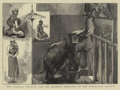The Burmese Priests and Mr Barnum's Elephant at the Zoological Gardens--Giclee Print