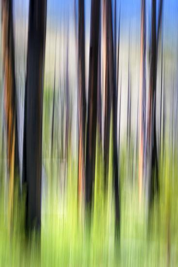 The Burn-Ursula Abresch-Photographic Print