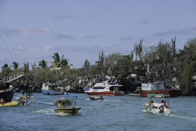 The Busy Harbor at Puerto Ayora, Galapagos Islands-Jad Davenport-Photographic Print