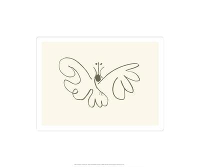 https://imgc.artprintimages.com/img/print/the-butterfly_u-l-e79tk0.jpg?p=0