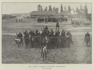 The C Troop, Australian Contingent, Johannesburg