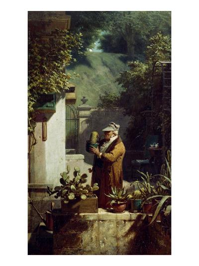 The Cactus Lover. before 1858-Carl Spitzweg-Giclee Print