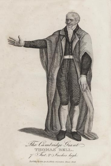 The Cambridge Giant, Thomas Bell, 7 Feet, 20 Inches High--Giclee Print