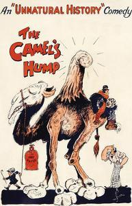 The Camel's Hump