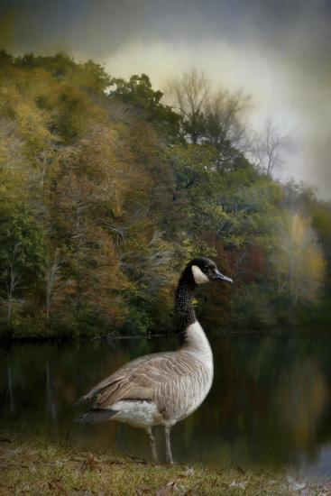 The Canadian Goose-Jai Johnson-Giclee Print
