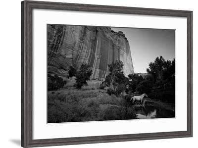 The Canyon De Chelly Anasazi Ruins and a Horse Crossing a Stream-Ben Horton-Framed Photographic Print